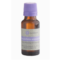 Levendula illóolaj (Lavandula angustifolia) BIO (20 ml) (45)