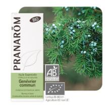 Boróka (Juniperus communis) (11)