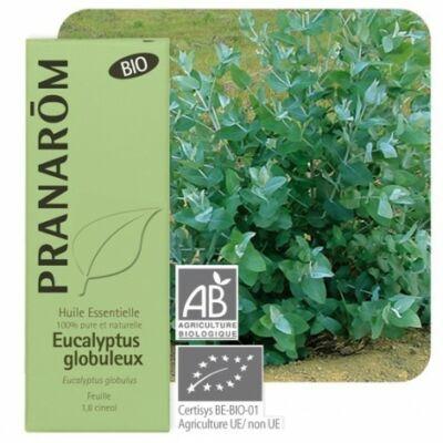 Tazmániai eukaliptusz  (Eucalyptus globulus) 10 ml (88)