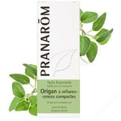 Oregano (Origanum compactum) 10 ml (83)