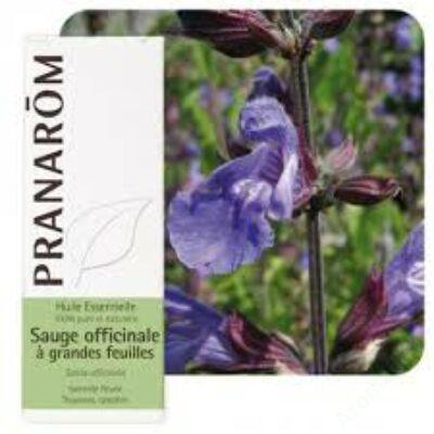 Orvosi zsálya (Salvia officialis) illóolaj bio 10 ml (47)