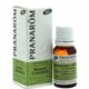 Rozmaring (Rosmarinus officinalis ct. camphore) 10 ml (68)