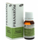 Rozmaring (Rosmarinus officinalis ct. camphore) 10 ml (68)